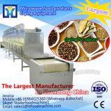 Best effect continuous belt fruit and vegetable vacuum dryer