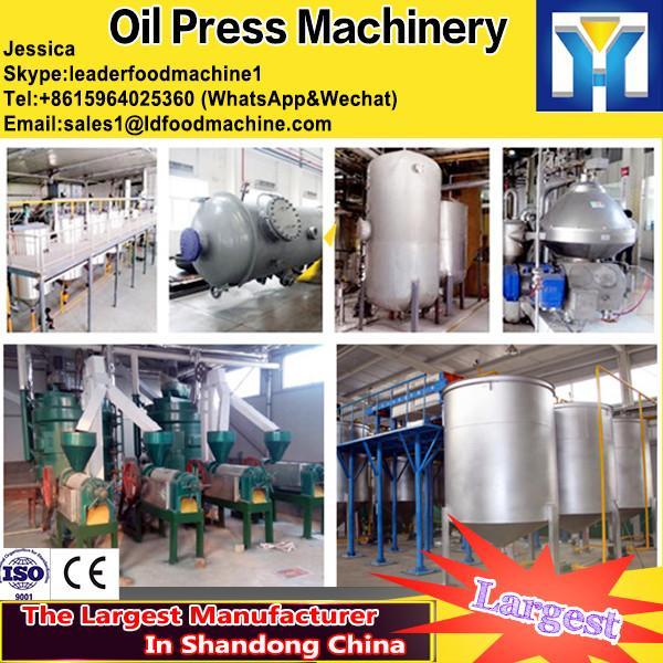 High Yield sesame/ flax oil press machine #1 image