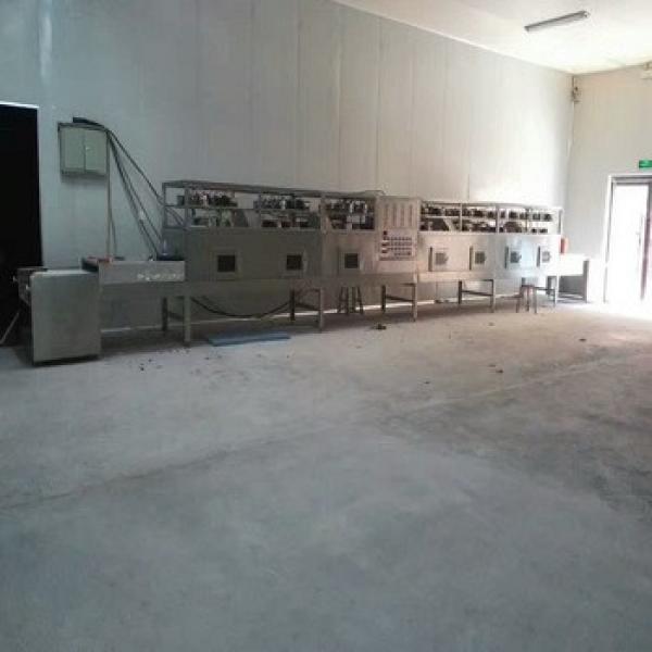 new tech microwave roasting equipment for macadamia nuts #1 image