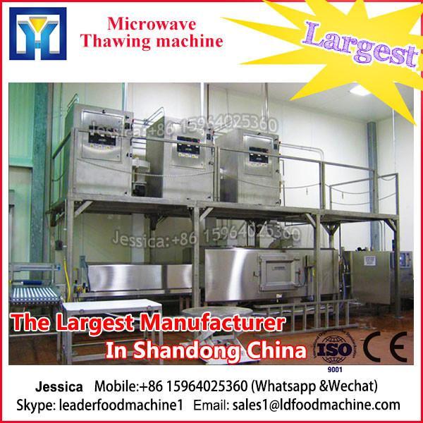 Low price meat thawing machine/frozen beef mutton chicken #3 image