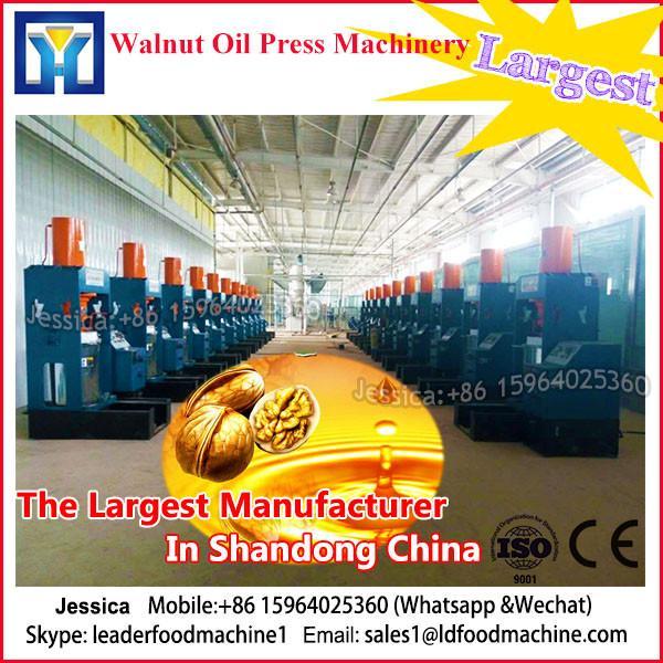 6YL Series Edible Mini Oil Press Machine #1 image