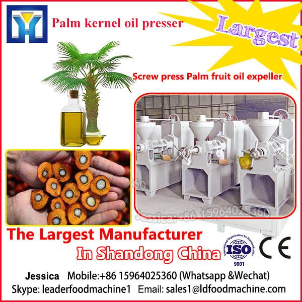 NewTechnology  Palm oil Pressing Machine/plant/oil making machinery #1 image