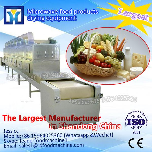 Automatic tunnel type Frozen Fish Microwave dry and sterilizer equipment #1 image