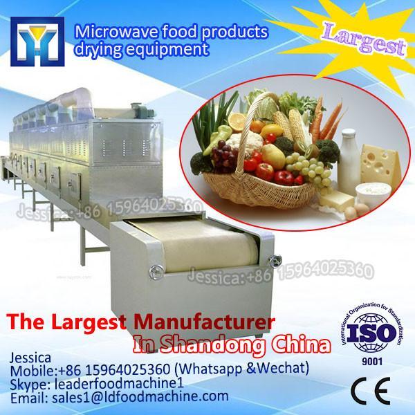 chestnuts/nuts microwave dryer/roaster machine--industrial Tunnel conveyor beLD type #1 image